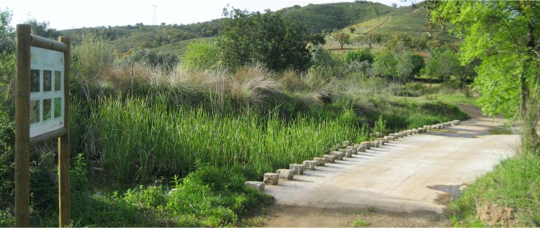 Estação Biodiversidade